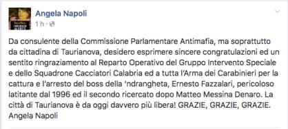 Angela Napoli Fazzolari fb ndr