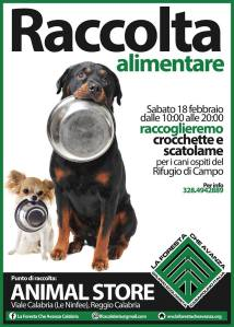 raccolta-cibo-cani